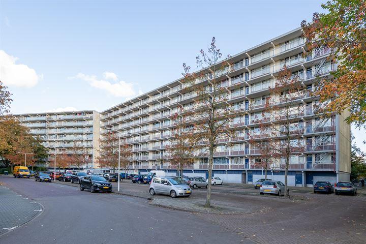 VvE Condorhorst